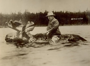 TR-riding-moose-560.7